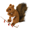 ROADIE RED SQUIRREL