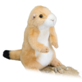Digger Prairie Dog
