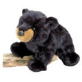 Boulder Black Bear