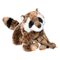 Patch Raccoon
