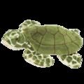 Toti Turtle