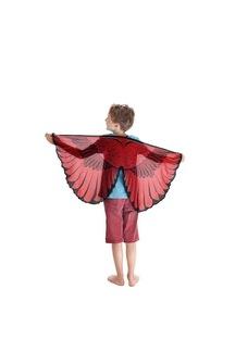 Cardinal Bird Wings picture