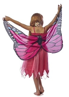 FANTASY DRESS W/MONARCH WING, PINK GLTR  - X SMALL picture