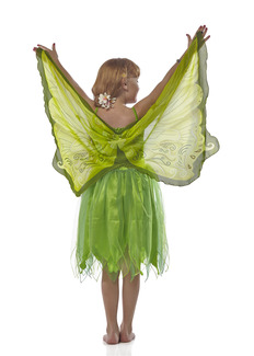 Wings, Fairy, Green picture