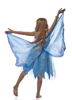Wings, Fairy, Blue picture