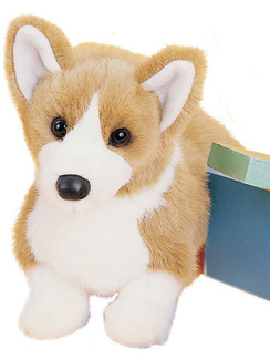 INGRID CORGI picture