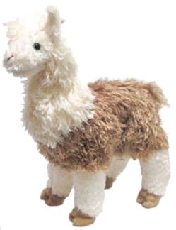 Paddy O'Llama, Llama - Alpaca picture