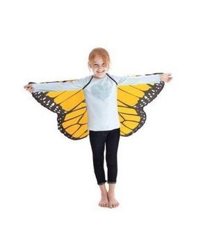 Wings, Monarch, Orange picture
