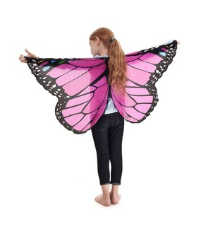 Monarch Wings w/Glitter, Pink picture