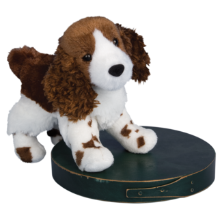 Flair Springer Spaniel picture