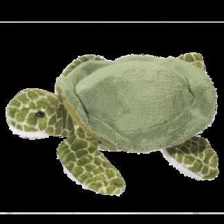 Tillie Turtle picture