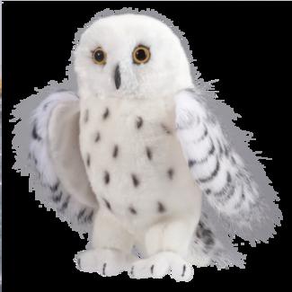 Legend Snowy Owl picture