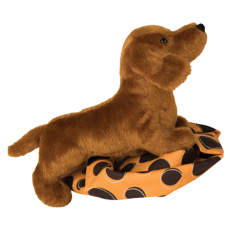 DILLY DACHSHUND picture