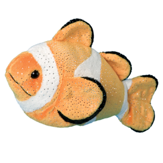 BOBO CLOWN FISH picture