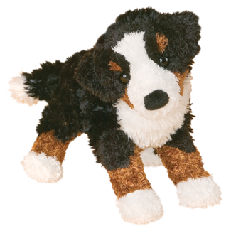 MIRANDA BERNESE MOUNTAIN DOG picture