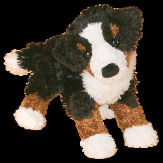 MIRANDA BERNESE MTN DOG picture