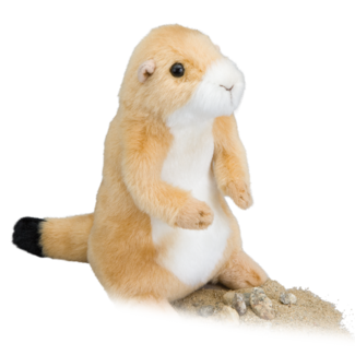 Digger Prairie Dog picture