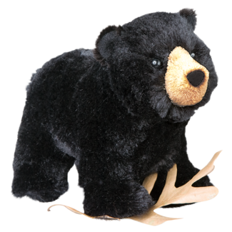 Morley Black Bear standing picture