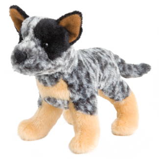Clanger Australian Cattle Dog picture