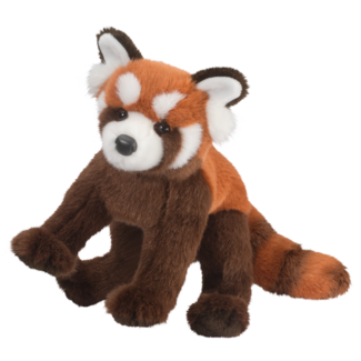 Carrots Red Panda picture