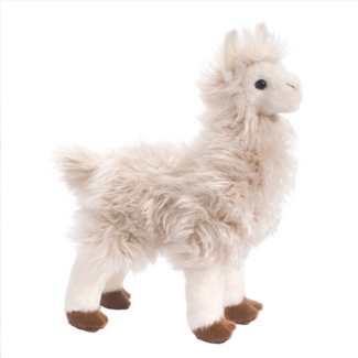 Francois Llama picture