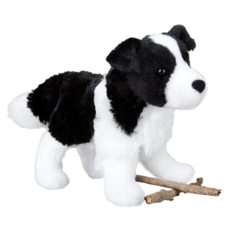 Meadow Border Collie picture