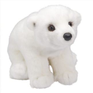 Aput Polar Bear picture