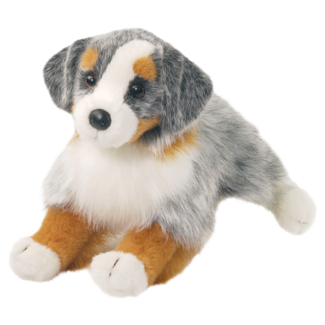 SINCLAIR AUSTRALIAN SHEPHERD picture