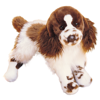 Ogilvy Springer Spaniel picture