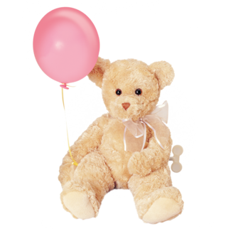 Musical Tender Teddy Bear picture