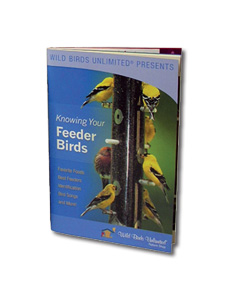 WBU Guide: Knowing Your Bird Feeder Birds picture
