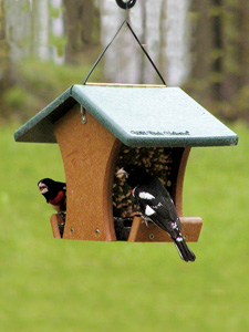 WBU EcoTough® Classic Too Bird Feeder picture