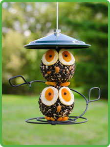WBU Owl Seed Cylinder & Feeder Combo picture