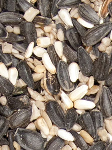 Supreme Blend Bird Seed - 5 lbs picture