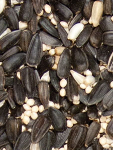 Deluxe Blend Less Millet Bird Seed - 5 lbs picture