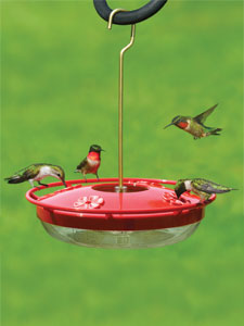 WBU High Perch™ Hummingbird Feeder - 12 oz picture