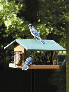WBU EcoTough® Ranchette Retreat Bird Feeder picture