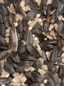 Supreme Blend Low Millet Bird Seed - 20 lbs picture