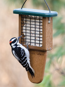 WBU EcoTough® Tail Prop Suet Feeder picture