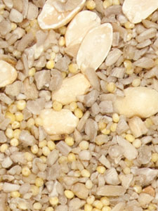 No-Mess Blend Bird Seed - 5 lbs picture