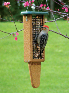 WBU EcoTough® Double Tail Prop Suet Feeder picture