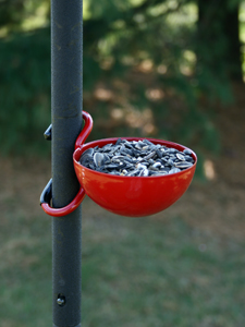 EZ-Attach Feeder Cup (red) picture