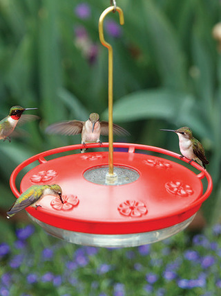 WBU Large High Perch™ Hummingbird Feeder - 16 oz picture