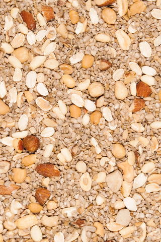 No-Mess Blend No Millet Bird Seed - 5 lbs. picture
