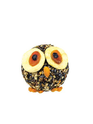 WBU Owl Seed Cylinder picture
