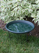 "20"" Bird Bath Dish - Green additional picture 1"