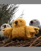 FT234e  Baby Owl Takes Flight - PDF