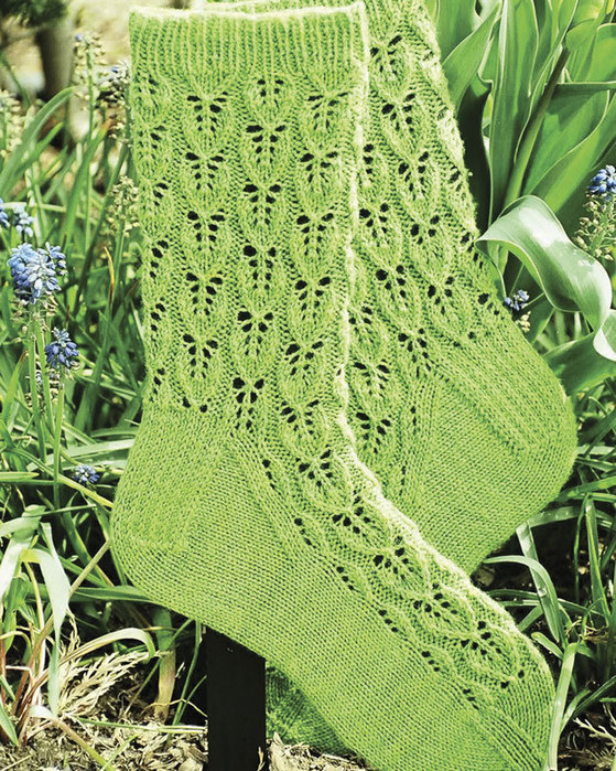 Ac58 Leaf Lace Socks By Evelyn Clark Fiber Trends