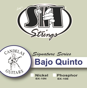 Bajo Quinto 10-String Nickel picture