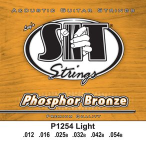 Phosphor Bronze Acoustic Nashville Tuning picture
